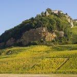 Comment bien profiter d'une randonnée dans le Jura ?